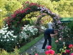 Rose Garden Picnic2008